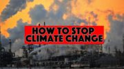 How to Stop Climate Change