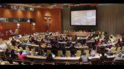 STF – À l'ONU